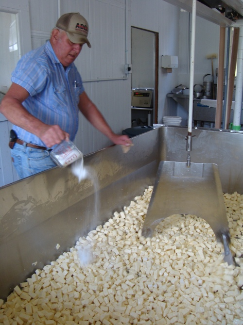 Ray Sr. mixes salt into the cut curds.