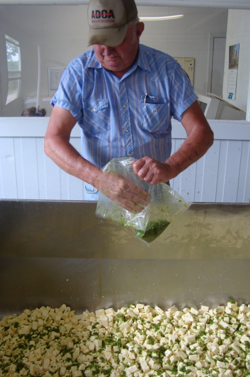 Ray Sr. mixes jalapenos into the curds.