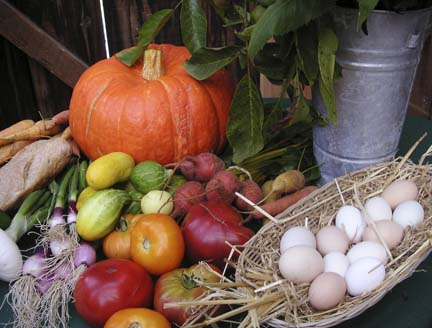 Oz_Farm_Field_to_Table_dinner_display1